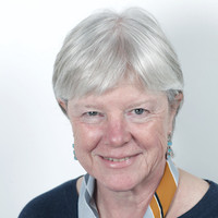 Robin Mansell Joins the Global Studies Advisory Board