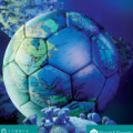 Time Out: Global Perspectives on Sport and the Covid-19 Lockdown / Time Out: National Perspectives on Sport and the Covid-19 Lockdown